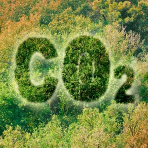 Climate @ G-STIC 2020