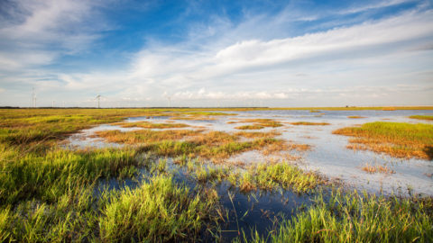 Nature-based solutions for climate-resilient societies