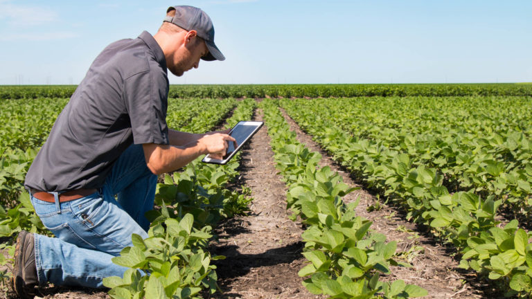 Technological innovations for sustainable food systems