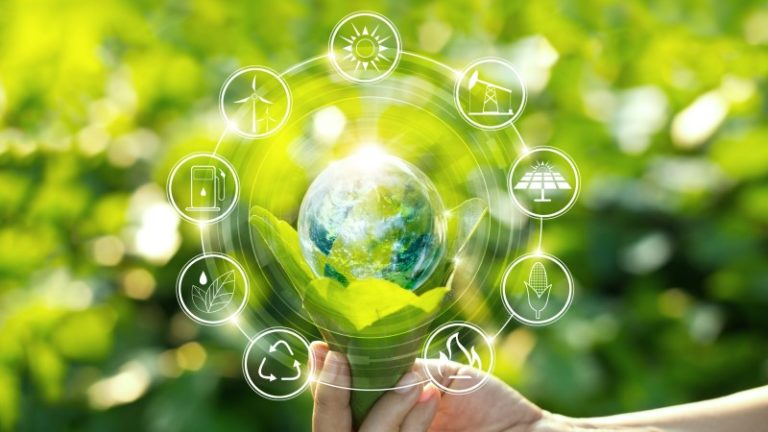Digital technologies enable a more sustainable world