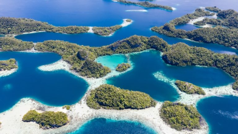 Technology can help achieve crucial 30% ocean protection